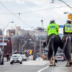 Toronto police laid 41 charges for large social gatherings over the weekend