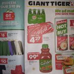 Giant Tiger Canada Flyer Deals December 2nd – 8th