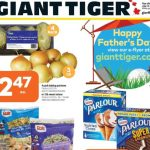 Giant Tiger Canada Flyer Deals June 16th – 22nd