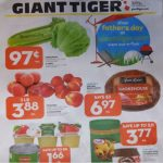 Giant Tiger Canada Flyer Deals June 9th – 15th