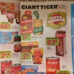 Giant Tiger Canada Flyer Sneak Peek January 13th – 19th